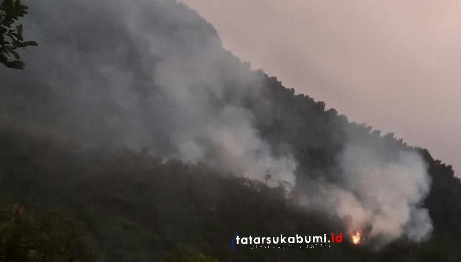 Karhutla 3 Hektare Lahan dan Hutan Taman Nasional Gunung Halimun Salak Terbakar