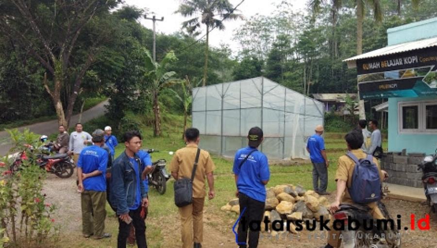 Budidaya Kopi Menjanjikan, Lahan Tidak Terkelola di Sukabumi Dijadikan Lahan Tanam Kopi