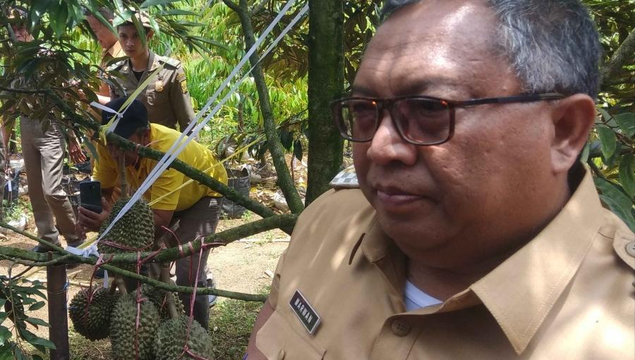 Pekan Festival Durian Kalapanunggal Awal Kebangkitan Petani Sukabumi