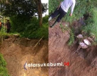 Saluran Irigasi Guling Jawa II Longsor 20 Hektare Areal Pertanian Terancam Kekeringan