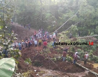 Pohon dan Tebing Tergerus Longsor Tutup Akses Jalan Kabandungan Sukabumi