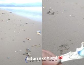 Ubur-ubur Blue Bottle Serang Pesisir Pantai Palabuhanratu Sukabumi